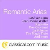Rigoletto - Act II - Aria: 'Cortigiani, Vil Razza Dannata...' artwork