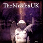 The Mission - Wasteland