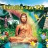 Buddha Bar XVI, Buddha Bar