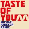 Taste of You (Michael Fakesch Remix) ジャケット写真