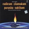 Rudhram Chamakam Purusha Suktham