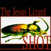 The Jesus Lizard - Skull of a German