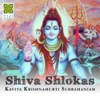 Shiva Shlokas