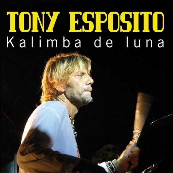 Tony Esposito mit Kalimba de luna