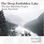 The Jazz Mandolin Project - Winterlong