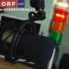 Radio NÖ Journal um 17.00
