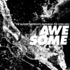 Awesome - Bloody Beetroots