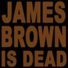 Rave Style vs. DJ Generic - James Brown Is Dead 2007  La Techno Classique Edit