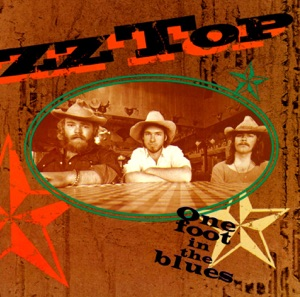 ZZ Top - A Fool for Your Stockings