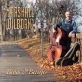 Marshall Wilborn - Hight Steppin' (feat. Pete Wernick)