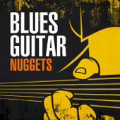Blues Guitar Nuggets