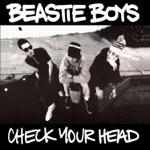 Beastie Boys - Something's Got to Give