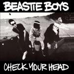 Beastie Boys - Gratitude (Live At Budokan)