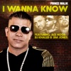 I Wanna Know (Remix) [feat. DJ Khaled, Ace Hood & Jim Jones] - Single, Prince Malik