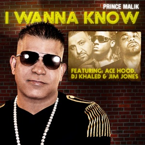 I Wanna Know (Remix) [feat. DJ Khaled, Ace Hood & Jim Jones] - Single Mp3 Download