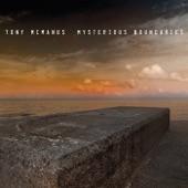 Tony McManus - Les Barricades Mysterieuses