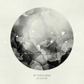 Listen to 30 seconds of Efterklang - Dreams Today