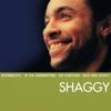 Shaggy - Luv Me Luv Me artwork