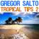 Various Artists - Gregor Salto - Tropical Tips 2
