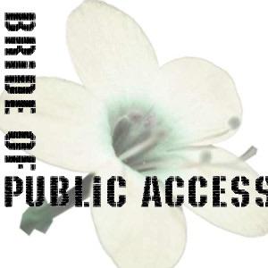 Bride of Public Access (video)