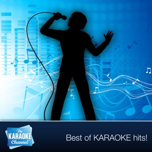 The Karaoke Channel - Without You (In the Style of Harry Nilsson) [Karaoke Version]
