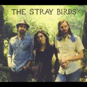 The Stray Birds - Wildflower Honey