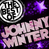 Johnny Winter - Mean Town Blues (live)