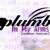 In My Arms (Kaskade Remixes) - Single, Plumb