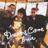 DREAMS COME TRUE - Kanashii Kiss artwork