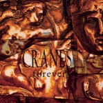 Cranes - Jewel