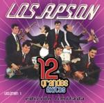 Los Apson - Cuando Yo Era un Jovencito - Cotto Fields-