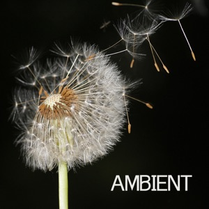 Ambient - Sea of Love
