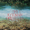 The Kyteman Orchestra - The Kyteman Orchestra kunstwerk