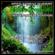 Natura cu muzica: Ciripitul păsărilor cu muzică (Bonus Track) - Jamie Llewellyn