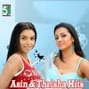 Asin and Thrisha Hits