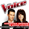 Christina Grimmie & Adam Levine - Somebody That I Used To Know (The Voice Performance) artwork