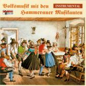 Volksmusik mit den Hammerauer Musikanten - Instrumental