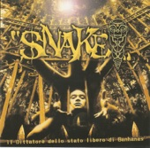 Snake - Cambiare