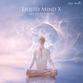 In the Silence of My Soul Part 1 - Liquid Mind