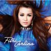 Fitri Carlina - Yank artwork