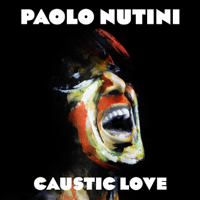 Paolo Nutini - Iron Sky artwork