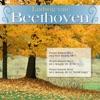 Beethoven: Piano Sonata No.4 in E-Flat Major, Op. 7; Piano Sonata No.5 in C Minor, Op. 10 No.1; Piano Sonata No.8 in C Minor, Op. 13