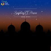 Symphony of Praises - Various Artists - Various Artists