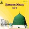 Famous Naats - Vol. 7