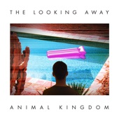 Animal Kingdom - Strange Attractor
