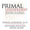 Daniel Goleman, Richard Boyatzis & Annie McKee - Primal Leadership: Realizing the Power of Emotional Intelligence artwork