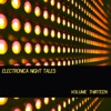 Electronica Night Tales, Vol. 13