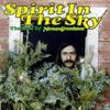 Norman Greenbaum - Spirit In the Sky Grafik