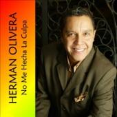 Herman Olivera - Enseñame Tú, Piensalo Bien (Bolero Medley) [feat. Michael Stuart]