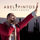 Sin Principio Ni Final - Abel Pintos